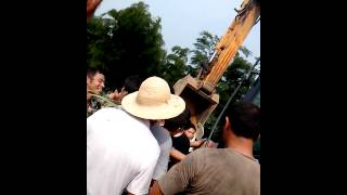 湖北省咸宁市咸安去大幕乡石桥村非法佔用山林