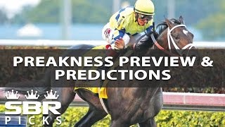Horse Betting Predictions | 2017 Preakness Stakes Picks