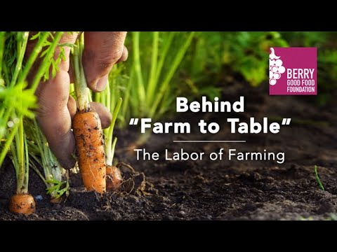 Behind Farm to Table: The Labor of Farming