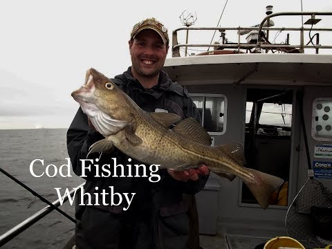 Cod Fishing With Bob Roberts And Brian Skoyles