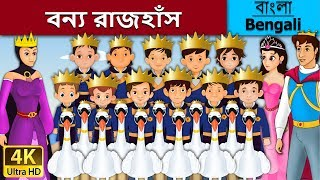 The Wild Swan In Bengali - Rupkothar Golpo - Bangla Cartoon - 4K UHD - Bengali Fairy Tales