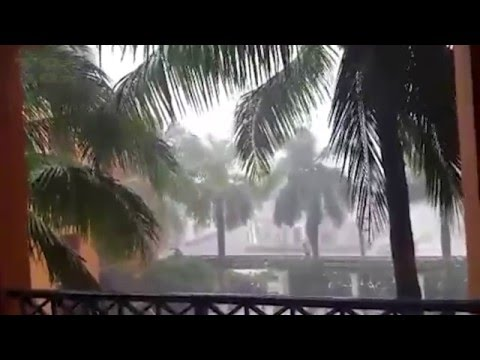 Florida Tornado Today: Watch How Powerful & Devastating Hurricane Alex was!