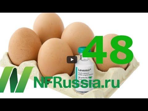№48 Яйца в рационе и риск диабета. Есть ли связь? Доктор Майкл Грегер.