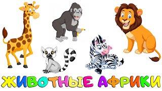 ЖИВОТНЫЕ АФРИКИ для Детей и малышей. Дикие Животные. Животные для самых маленьких. Обучающее видео