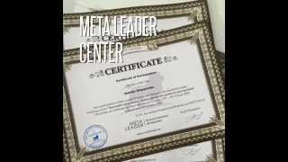 Что происходило за 2014-15 год в центре НЛП Meta Leader?