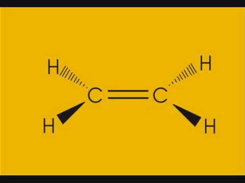 double bond formation