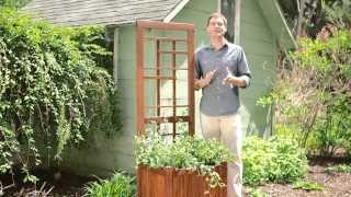 Coral Coast Halstead Wood Planter Trellis - Product Review Video