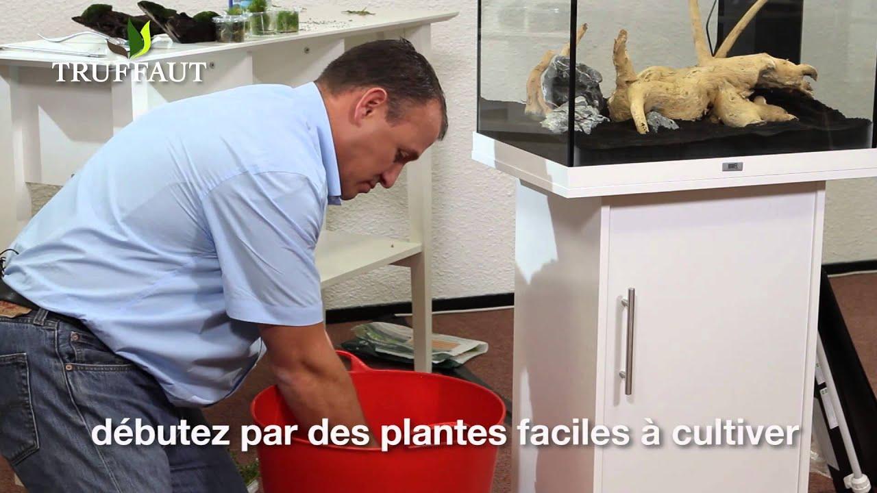 Comment installer des plantes d 39 aquarium jardinerie for Porte plantes dinterieur truffaut