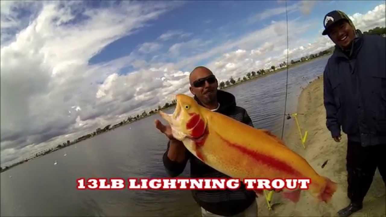Santa ana river lake trout fishing 3 1 2015 youtube for Santa ana river lakes fishing