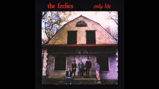 Watch Feelies Its Only Life video