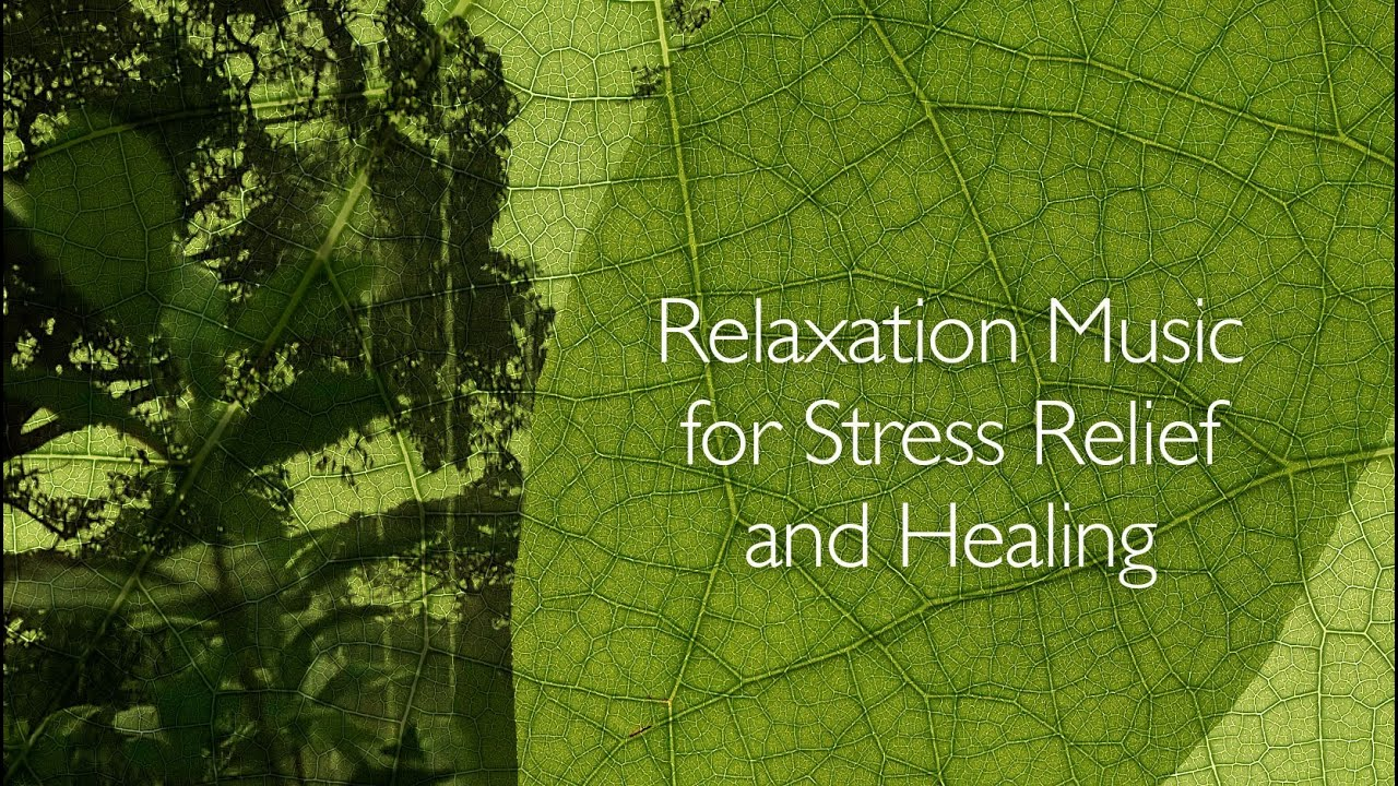 Relaxation Music for Stress Relief and Healing - YouTube  Relaxation Musi...