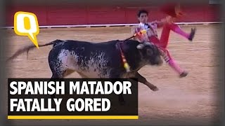 The Quint: Spanish Bullfighter Fatally Gored for the First Time in 3 Decades