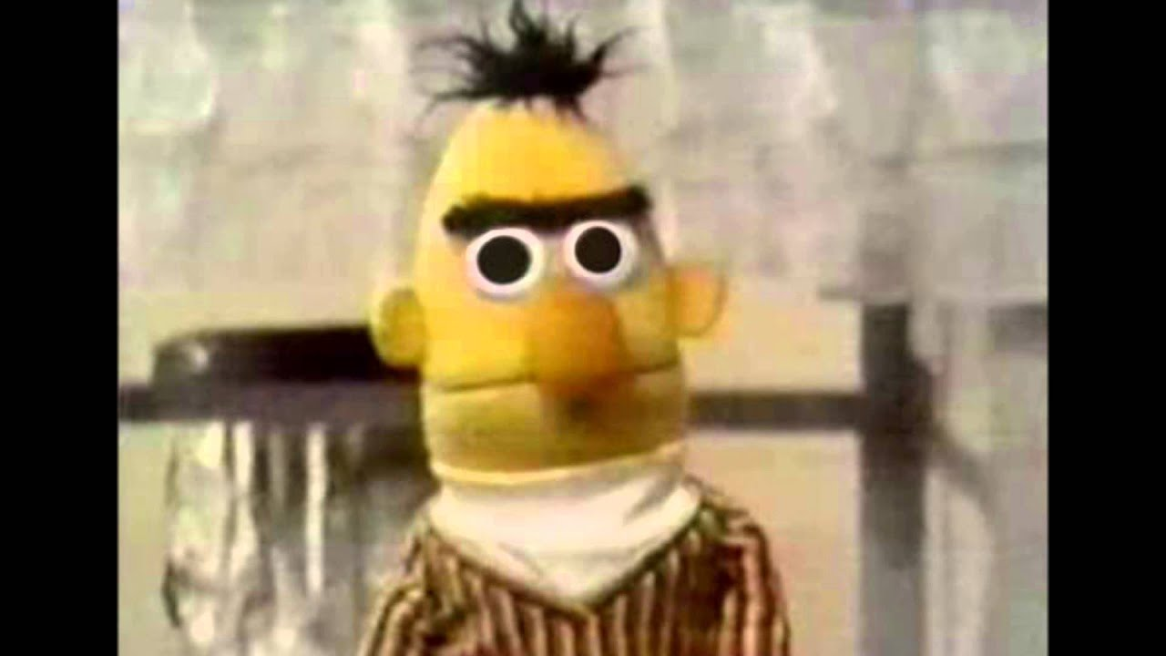 Image result for bertstare