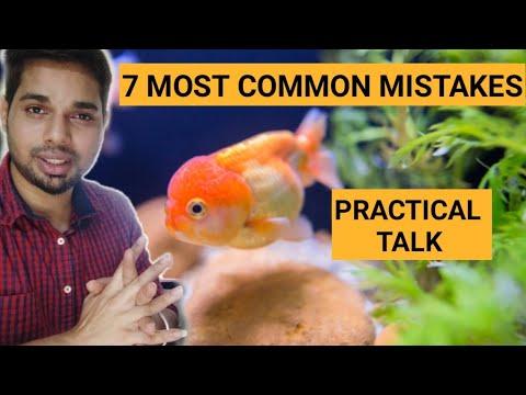 Goldfish Care || 7 Mistakes That Harm Goldfish || Reasons Why Goldfish Die || Goldfish Long Life
