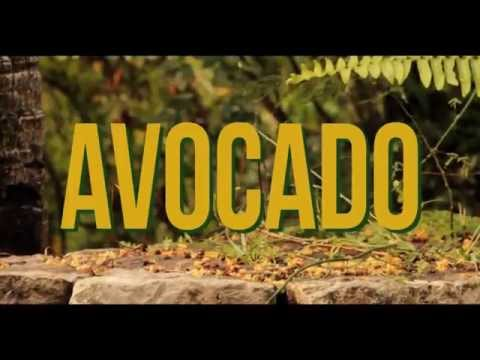 0 - Video: Jah9 - Avocado | Jamaica Reggae/Dancehall