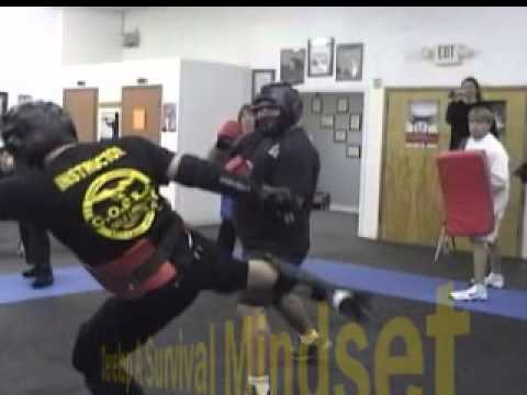 police-officer-training-for-civilians-best-self-defense-in-clearwater-and-nationwide-cobra-defense