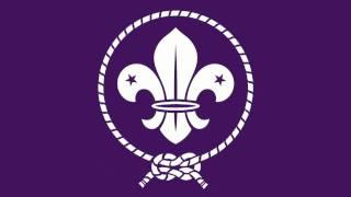 Les crapauds #2 • Chants scouts