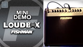 Fishman's lightest and most portable amp yet, Loudbox Mini delivers...