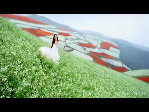 Pookale Satru Video Song Cut