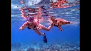 ギリ・トラワンガン (Gili Trawangan) ロンボク島北西部沖にあるギリ三...