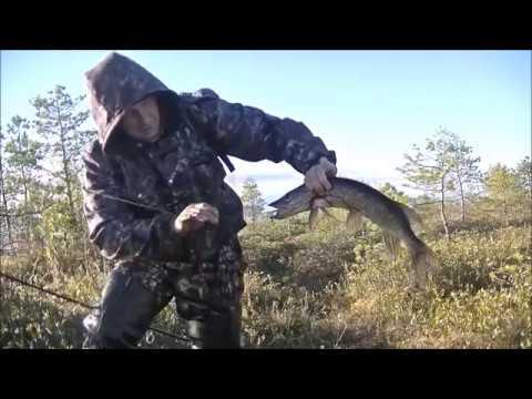 Рыбалка на спиннинг с берега. Щука и Окунь.