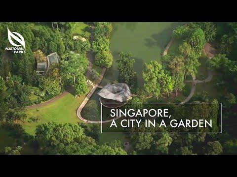 Singapore, A City In A Garden