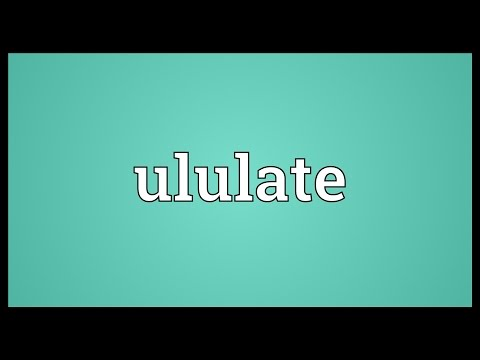 Header of ululate