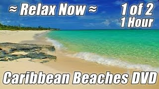 MEDITATION OCEAN #1 HOUR Beach Hypnosis Relaxing Nature Sounds Relax Study Waves Studying Videos