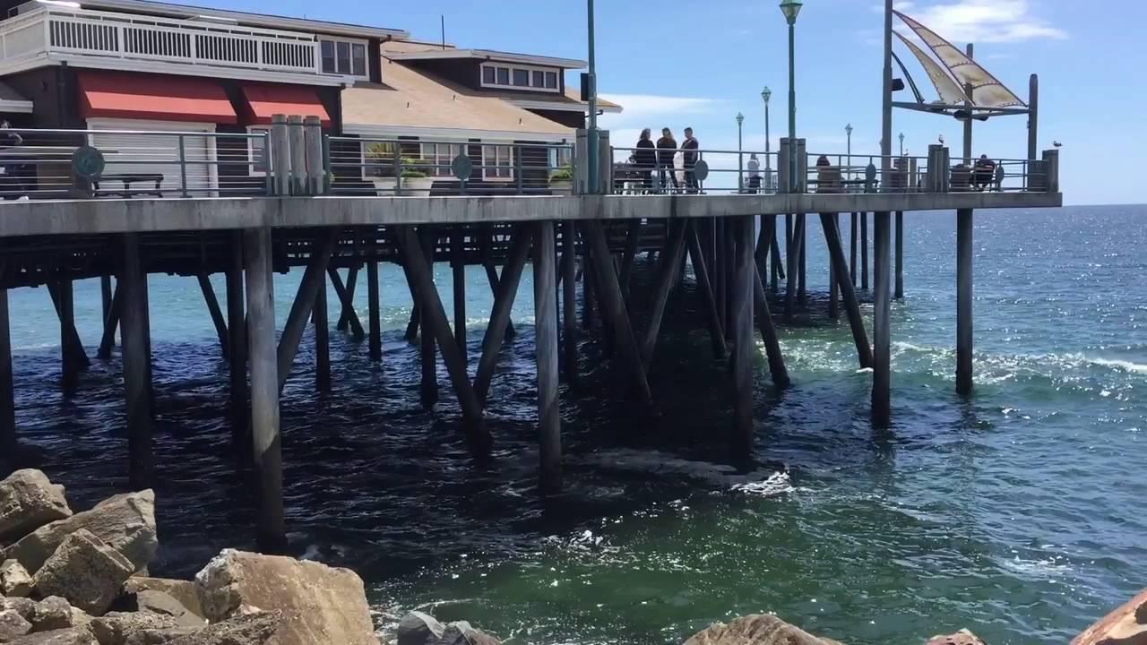 Redondo Beach Pier Fishing