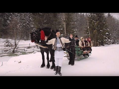 Alexandru Bradatan - Sanioara cu doi cai (2016)