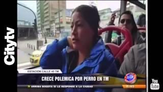 Citytv: Crece la polémica por perros en Transmilenio