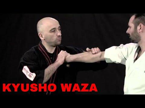 Kyusho Jitsu - Serge Rebois - Les points vitaux en DVD