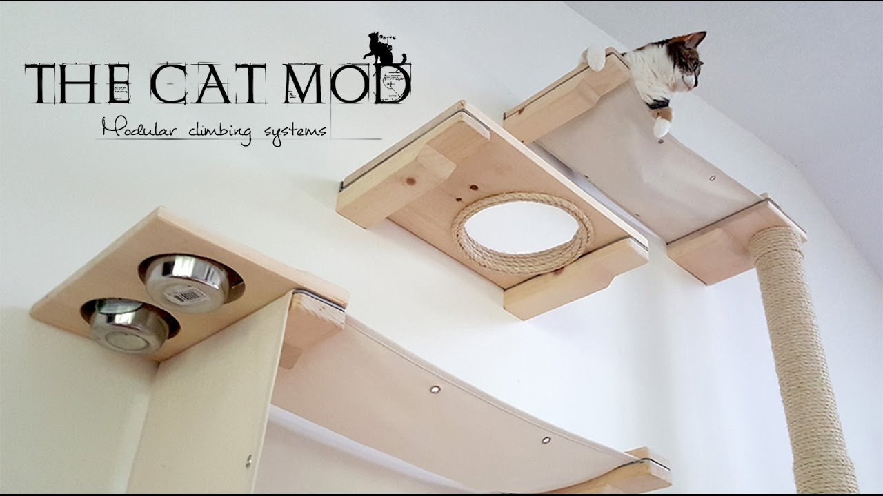 The Cat Mod Modular Climbing Systems Youtube