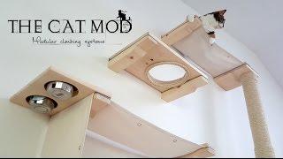 The Cat Mod - Modular Climbing Systems