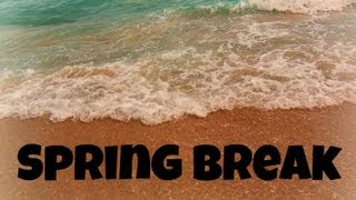 BookRenter - Spring Break Thumbnail