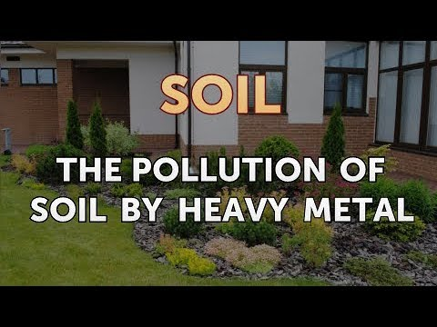The Pollution Of Soil By Heavy Metal