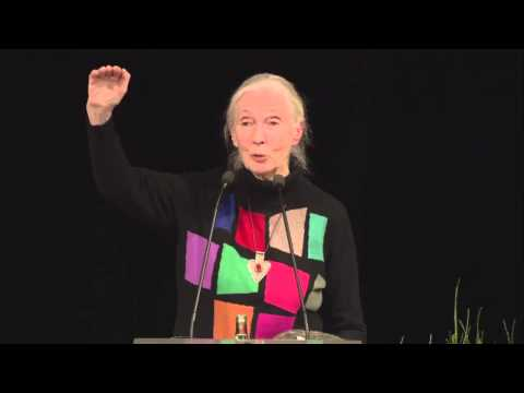 Keynote speech by Dr Jane Goodall