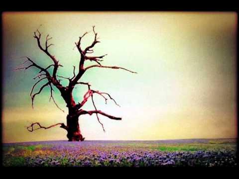 Blackbird Raum - Silent Spring