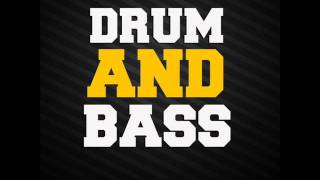 Drum and Bass 2011 ( mix by Sören Wernicke )