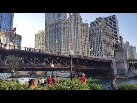 My Trip to Chicago, IL.