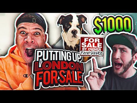 SELLING ALISSA VIOLET AND FAZE BANK'S DOGS UP FOR SALE PRANK (HE RAGES)