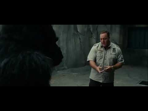 Download Zookeeper (2011) Bernie and Griffin