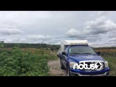 Encuentra a tres personas asesinadas en Pénjamo