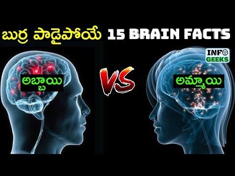 15 Brain Facts