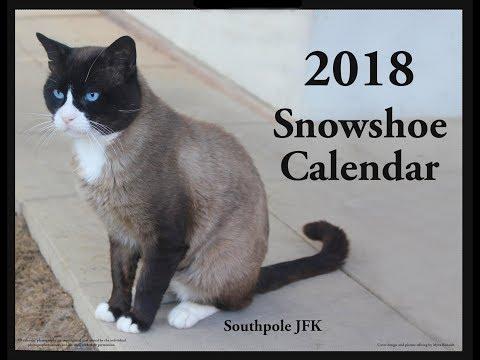 2018 Snowshoe Cat Calendar- Very Cute
