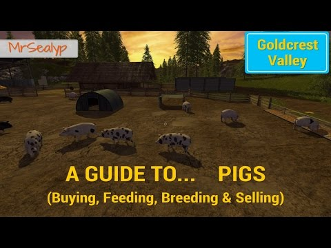 Farming Simulator 17 PS4: A Guide to... PIGS (Buying, Feeding, Breeding & Selling)