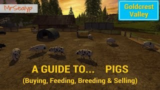 Farming Simulator 17 PS4: A Guide to... PIGS (Buying, Feeding, Breeding & Selling)