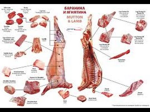 Cutting lamb carcasses !