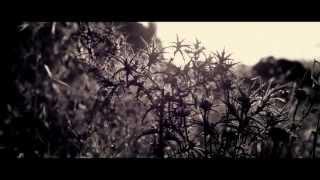"""Rise"" - Afshin Toufighian & Ali Youssefi"
