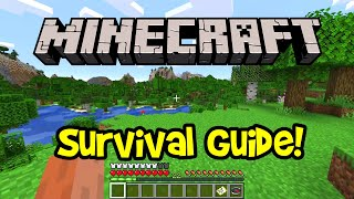 Minecraft Survival Guide 2020 (How T๐ Play Minecraft for Beginners)
